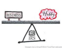 Business Hobby IRS